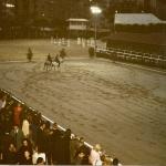 eventos de empresa en equitación