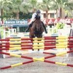 equitación disciplina de salto